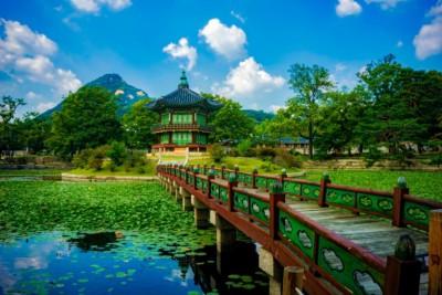 경복궁 안쪽의 향원지 연못 한가운데 작은 섬에 앉아 있는 아름다운 향원정을 바라보고 있습니다. 나무 위의 밝은 녹색 잎과 청명한 푸른 하늘이 건물을 둘러싸고 있는 것을 볼 수 있습니다.