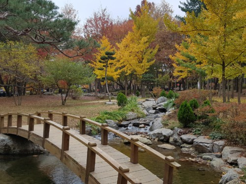 Picture of a bridge over water at beautiful Nami Island in Autumn