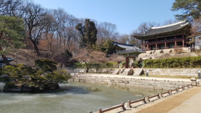 A picture of a small frozen pond inside Changdeokgung Palace in winter