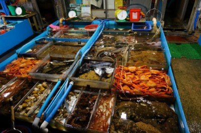 Looking at stall selling lots of different seafood inside Daepo Port market
