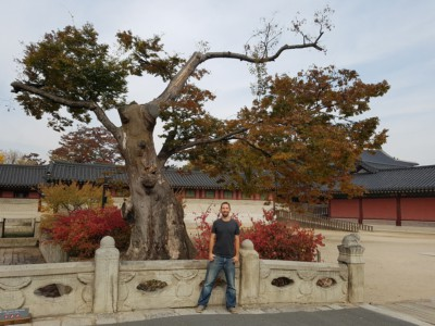 Looking at someone posing on beautiful Geumcheongyo Bridge with an Autumn colored tree and bushes in the background