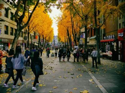 가을의 절정에 나무에 밝은 노란 잎을 가진 인사동 공예품 시장