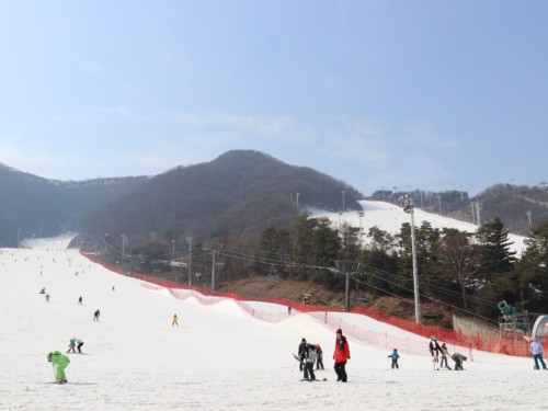 People skiing at Jisan Forest Ski Resort