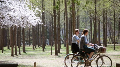 Two young ladies riding bikes on our Nami Island and Petite France tour