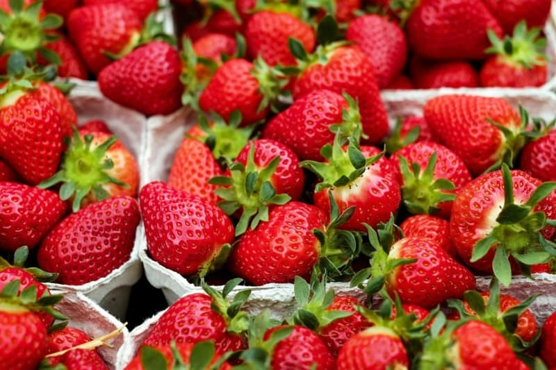 Very sweet organic Korean Strawberries
