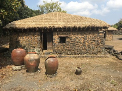 500년 된 성읍민속마을의 전통 가옥으로, 밝은 초록색 나무와 과일을 배경으로 하고 있음