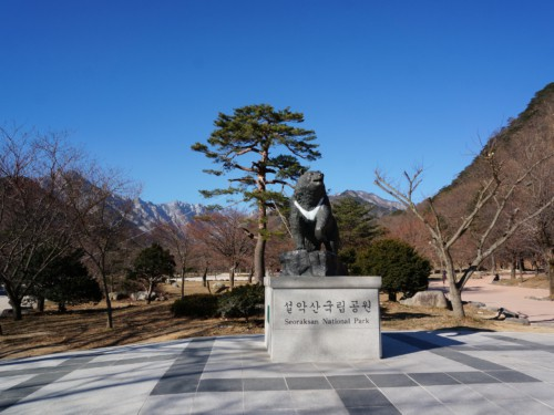 A statue of a bear near the entrance of Seoraksan National Park